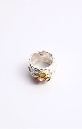Picture of Venus Collection: Silver Ruby,Quartz and Tanzanite Ring